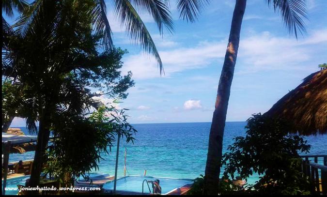 seafari room view-joniewhattodo